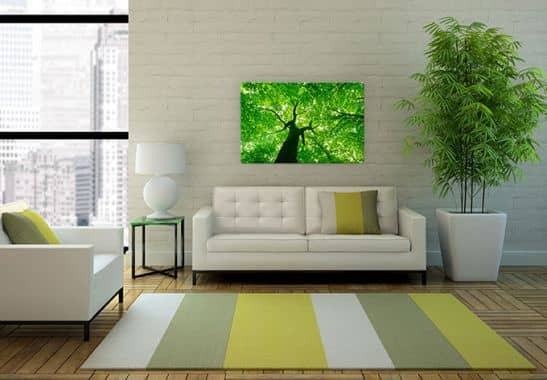 glasbild under the trees gr ner bl tterhimmel als wandbild wall. Black Bedroom Furniture Sets. Home Design Ideas