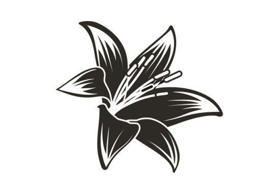 pin blomster og kolibri on pinterest. Black Bedroom Furniture Sets. Home Design Ideas