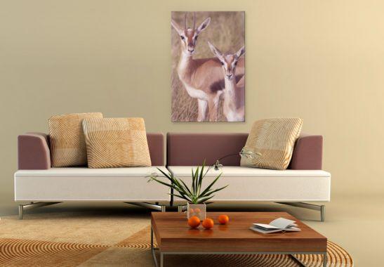 xxl acrylglas springb cke von k l wall art wall. Black Bedroom Furniture Sets. Home Design Ideas