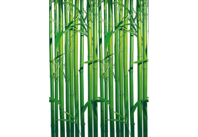 bamboo forest photo wallpaper wall. Black Bedroom Furniture Sets. Home Design Ideas