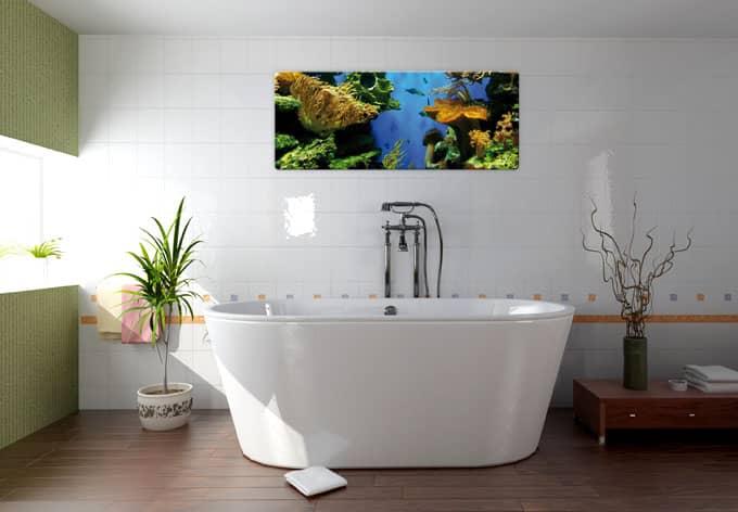 Panorama glasbild korallenriff sehenswerte - Glasbild badezimmer ...