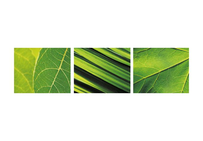 Vinyl Tapeten Auf Raufaser : Artikel Kundenbewertungen (1) Materialbeschreibung Klebeanleitung