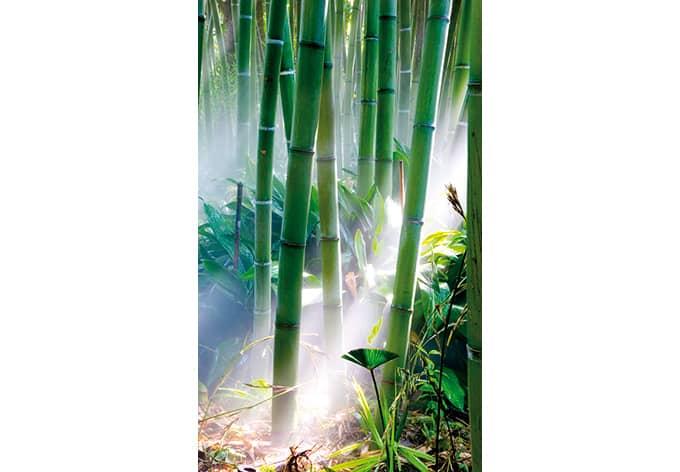 fototapete bamboo forest von k l wall art wall. Black Bedroom Furniture Sets. Home Design Ideas