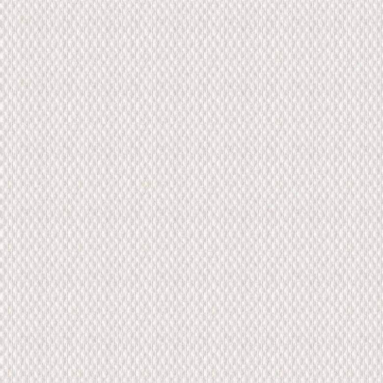 B 401 Glasfasertapete 25 M 250 G M Wt 1040106 6
