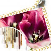 Poster Bsmart - Tulips