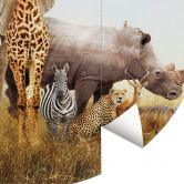 Behangcirkel Animals in Africa
