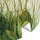 Fototapete Dürer - Das große Rasenstück - Rund
