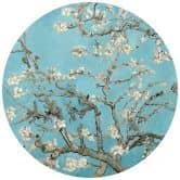 Fototapete van Gogh - Mandelblüte - Rund