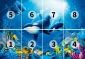 Ocean - Photo Wallpaper