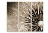 Wandbild Pusteblumen-Poesie (3-teilig)
