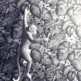 Livingwalls Vliestapete Colibri Tapete in Dschungel Optik schwarz, weiß