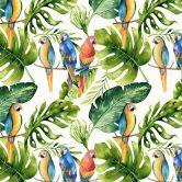 Möbelfolie Kvilis - Papageien im Dschungel