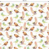 Mustertapete - Bunte Vögel