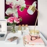Wallprint W - Blütenpracht einer Orchidee - quadratisch