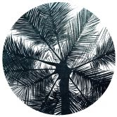 Sticker mural Kubistika - California Dreaming - Rond