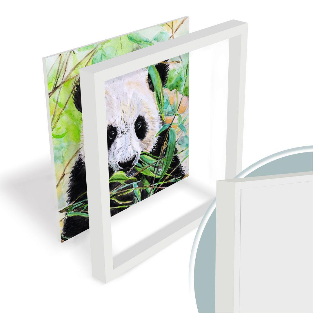 Panda forex