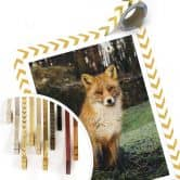 Poster Fuchs 01