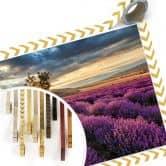 Poster Lavendelblüte in der Provence