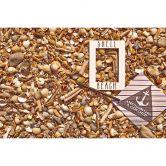 colourcourage® Premium Wandfarbe matt Shell Beach