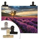 Poster Lavendel in de Provence