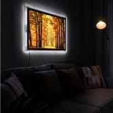 LED-Wandbild - van de Goor - Herbstallee