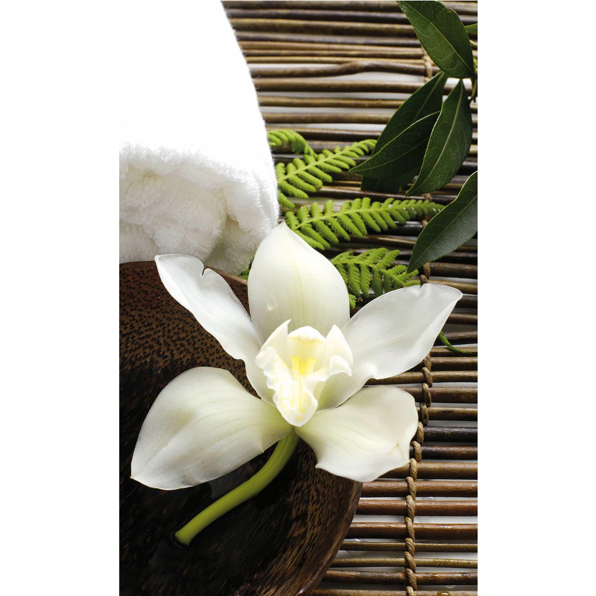 Wallpaper orchidee weiß  Fototapete Wellness Orchidee - Wanddekoration für Ihre Wand   wall ...