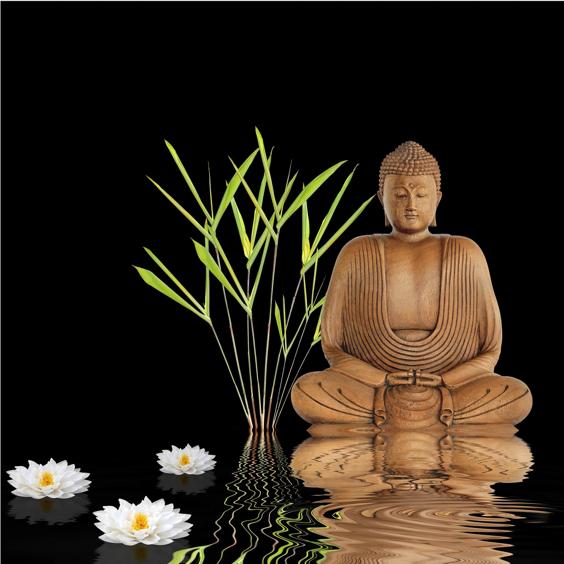 zen buddha   photo wallpaper   wall art