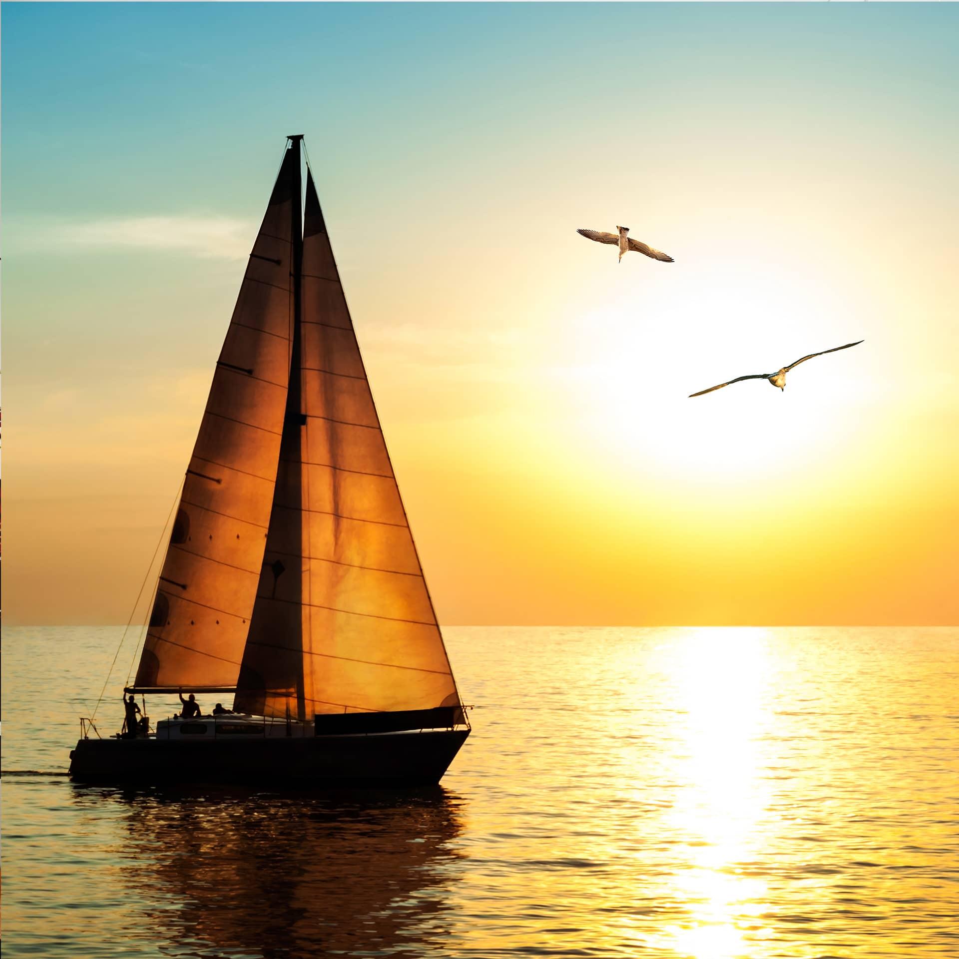fototapete segelboot im sonnenuntergang - tolle wanddeko für ... - Fototapete 250x250