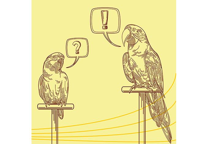 fototapete papageien illustration - stylischer look für zuhause ... - Fototapete 250x250