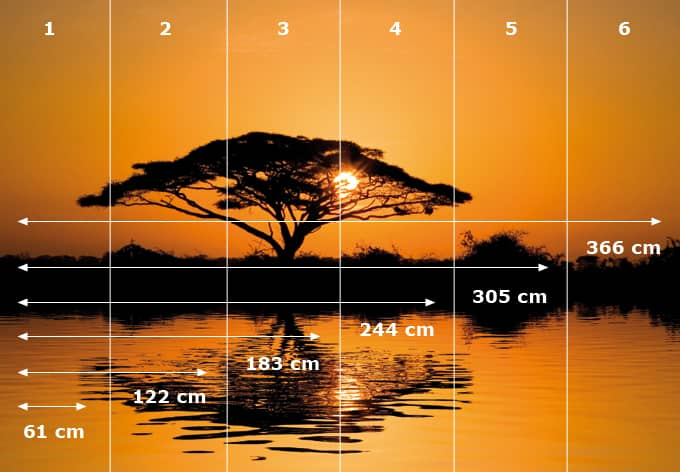 Selbstklebende Tapete M?nchen : Fototapete Africa – afrikanische Savanne im Sonnenuntergang wall-art