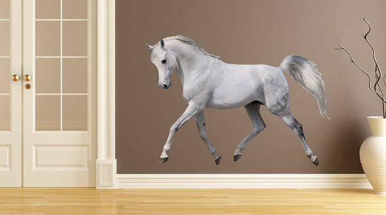 Wandtattoo Pferde & Wandtattoo Pony - Wandtattoo | Wall ...