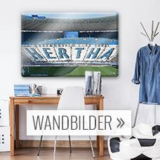 hertha bsc fanshop wandtattoos wandbilder fototapeten wall. Black Bedroom Furniture Sets. Home Design Ideas